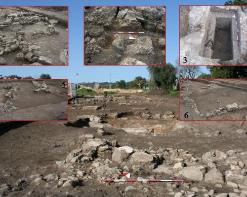 3. Le Grotte, Castellaneta (Province of Taranto): northern area of the settlement. 1) Remains of constructions; 2) Roman calcatorium (for grape pressing and must processing); 3) Greek pit grave; 4-5) remains of constructions relating to various stages in the life of the settlement; 6) remains of a large building, perhaps a dwelling.